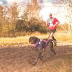Canicross o Dog Trekking: haciendo deporte con tu perro