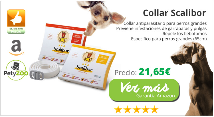 collar-scalibor-antiparasitos-leishmania-comprar-online