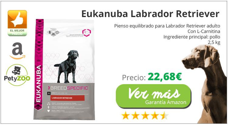 comida-especifica-perro-labrador-eukanuba-online