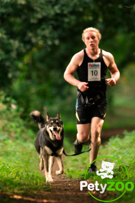 deporte-perro-canicross