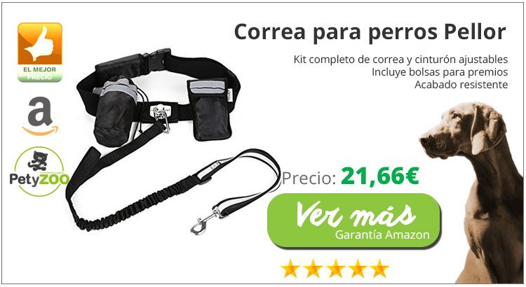kit-cinturon-correa-canicross-online