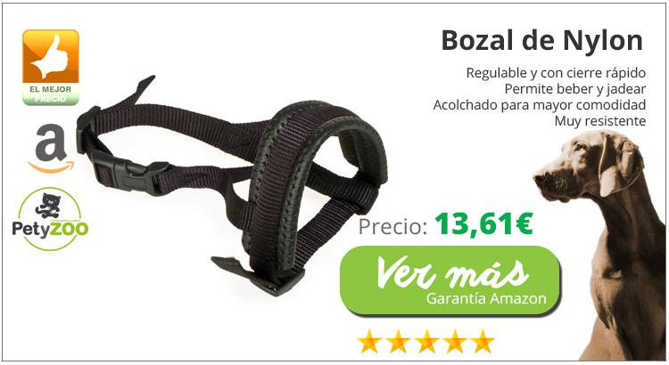 bozal-perro-potencialmente-peligroso-alta-calidad