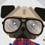 Los gadgets que tu perro quiere (y necesita)