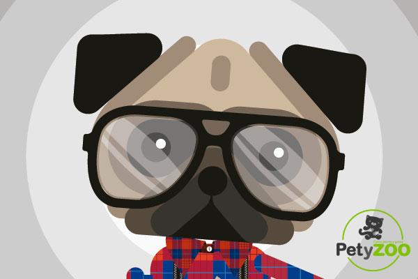 gadgets-para-perros-petyzoo