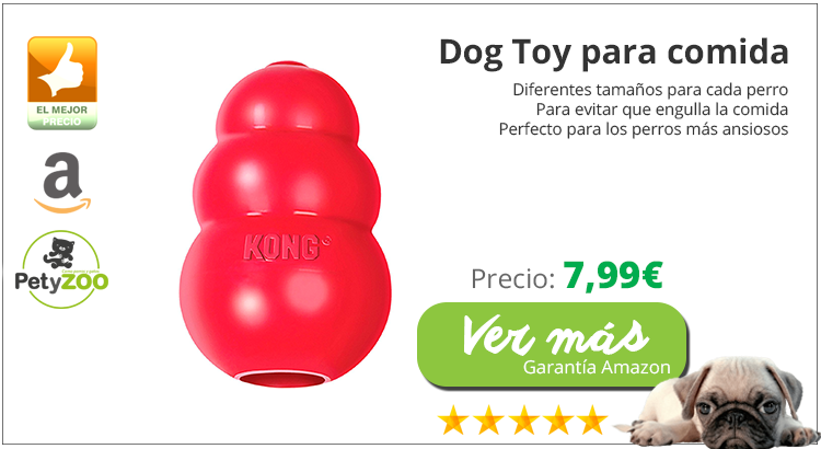dogtoy-perros-blog-petyzoo