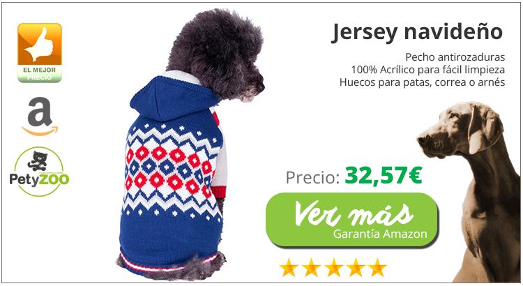 frio-navidad-perros-jersey