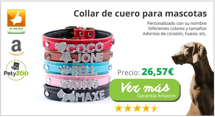 producto-amazon-collar-cuero