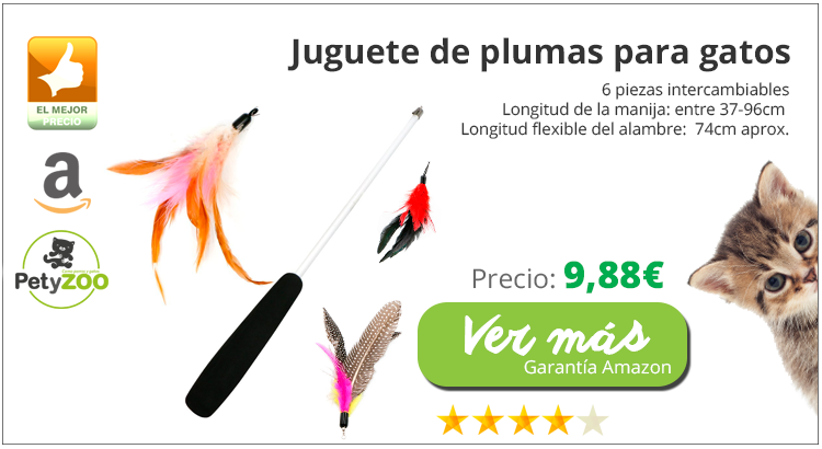 productos-plumas-gatos