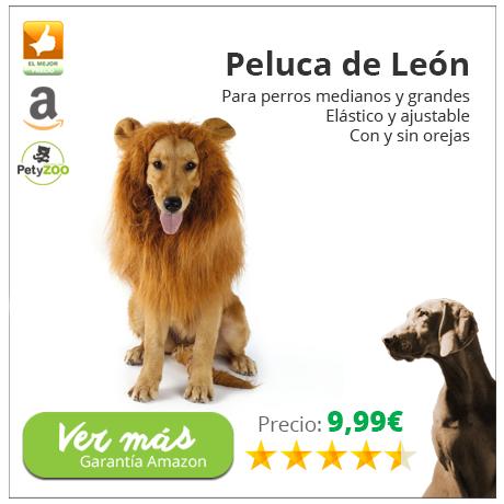 Nueva-plantilla-peluca-leon