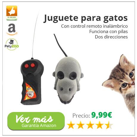 raton-para-gatos