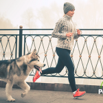 Qué hacer para que tu perro baje de peso