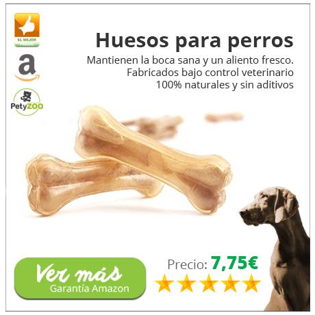 snacks-perro-1
