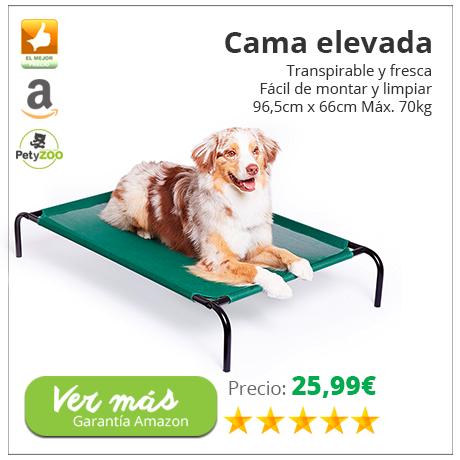 cama-elevada-perro-descanso-petyzoo