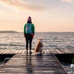 Lugares para viajar con tu mascota