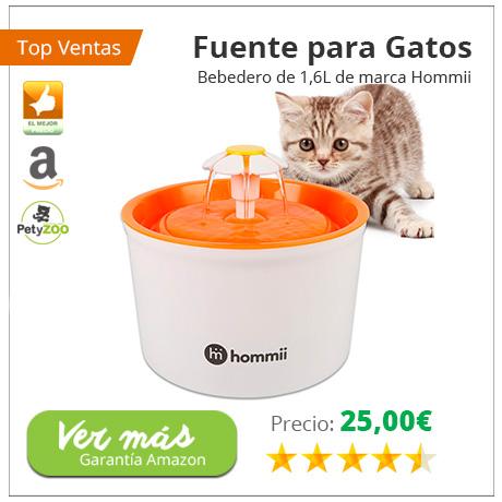 san-valentin-bebedero-gatos-petyzoo
