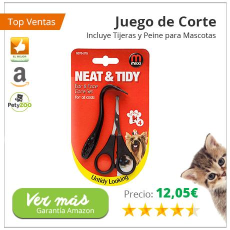 ¿Sabes qué le puede pasar a tu gato si no cuidas sus orejas? 3