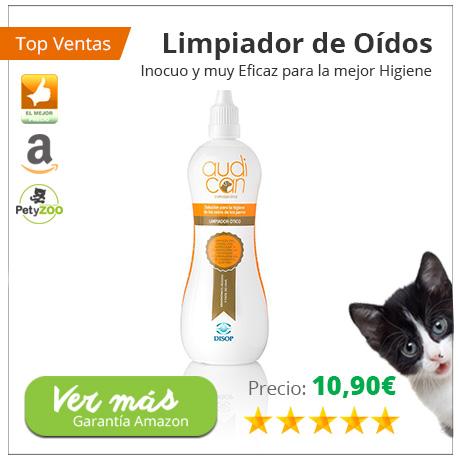 ¿Sabes qué le puede pasar a tu gato si no cuidas sus orejas? 1