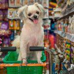 Cómo ahorrar en la alimentación de tu mascota sin perder en calidad