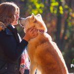 8 formas de demostrarle a tu perro que le quieres