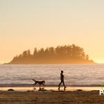 5 mejores playas caninas de España