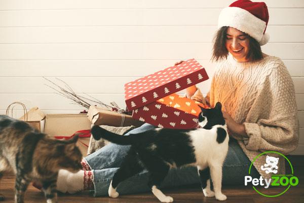 Qué regalar a un perro o gato en navidad