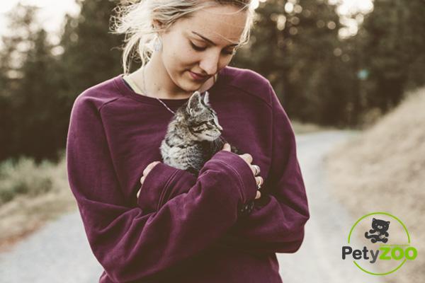 Adopta perros y gatos