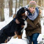 Los mejores destinos para viajar con perros en invierno